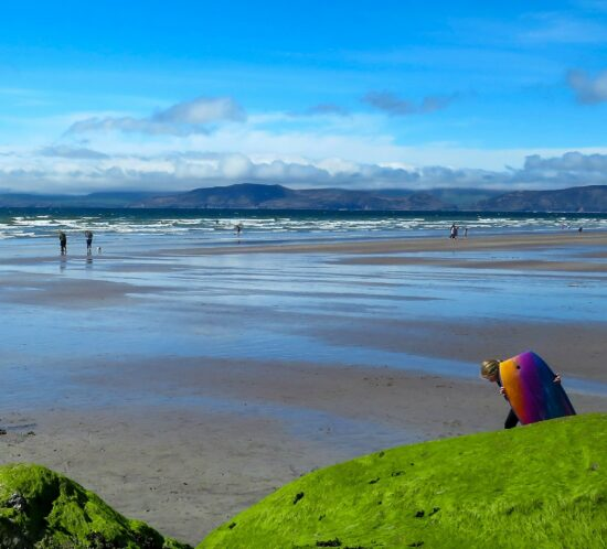 duurzame stranddag